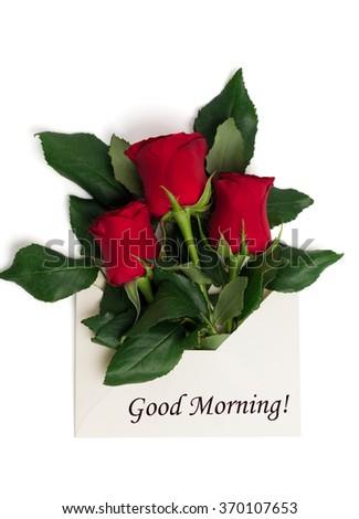Rose Flower Image Hd Good Morning