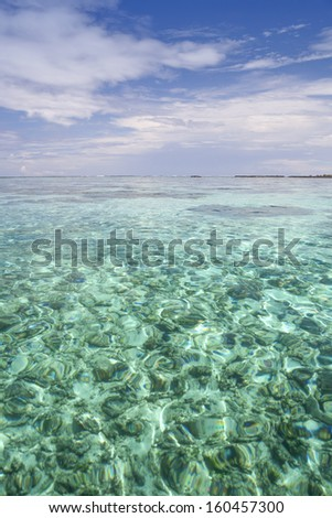 Tahiti. Warm shallow lagoons of the island of Bora- Bora island.