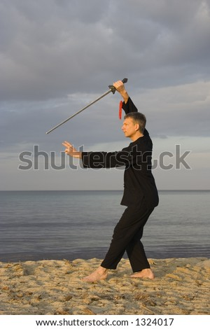 small stars clip art. stock photo : tai chi - posture small star - art of self-defense
