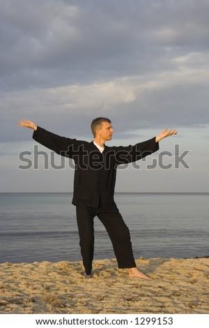 tai chi - posture step back dispatch monkey - art of self-defense