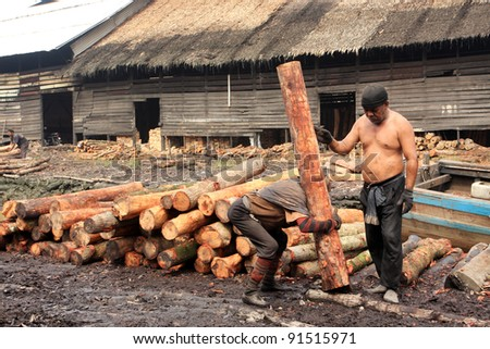 TAIPING, MALAYSIA - DECEMBER 17: Unidentified worker carrying raw mangrove wood to be processed as charcoal on December 17, 2011 in Taiping, Malaysia.