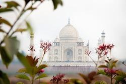 Taj Mahal, Agra India