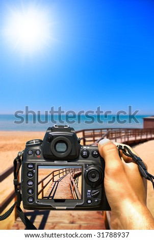 Take a photo of the summer