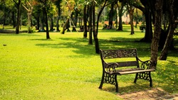Take a picture of an empty bench in the park