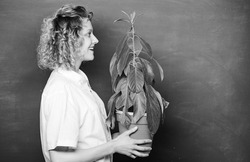 Take good care plants. Florist concept. Botany and biology lesson. Botanical expert. Botany education. Botany is about plants flowers and herbs. Woman chalkboard background carry plant in pot.