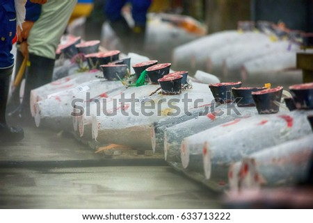 Taken at Tsukiji Fish Market in the Tuna Auction, carcasses of frozen Tuna on wooden pallets on display