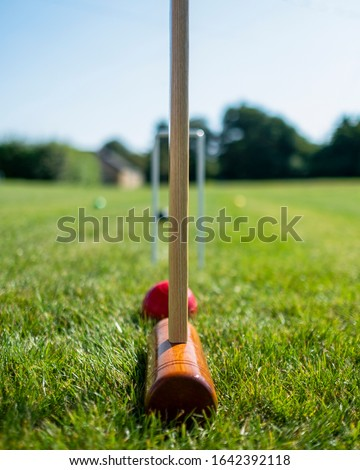 Taking aim during croquet match