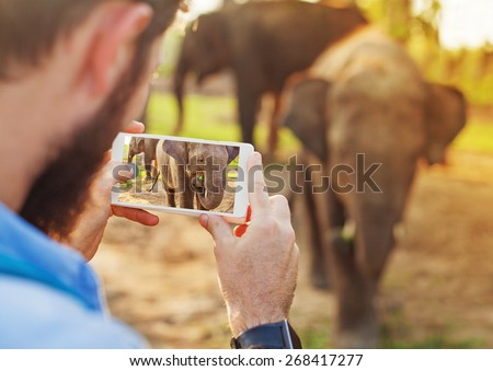 talented man photographing baby elephant with his mobile phone camera in Chitwan national park, Nepal #268417277