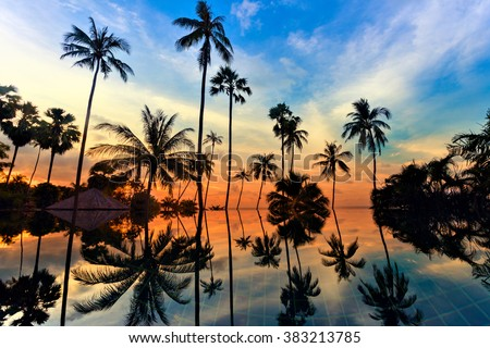 Tall coconut palm trees at twilight sky reflected in water. Picturesque romantic sunset or sunrise scene on Koh Samui island, Thailand #383213785