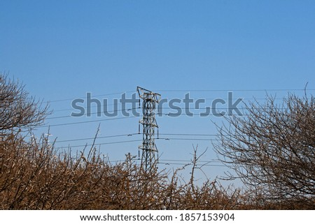 TALL ELECTRICAL PILON IN A LANDSCAPE WITH DRY VEGETATION AGAINST BLUE SKY Stok fotoğraf ©