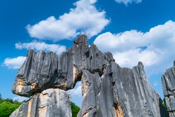 Tall rocks formations of limestone in The Stone Forest located in Shilin Yi Autonomous County of Yunnan Province in China, Asia, UNESCO World Heritage Site