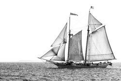 Tall ship under sail in monochrome, isolated against white, with copy space
