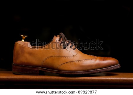 Tan Mens fashionable dress and business shoes