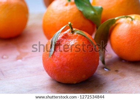 Tangerine or clementine with green leaf. Tangerines - oranges, mandarins, clementines, citrus fruits with leaves #1272534844