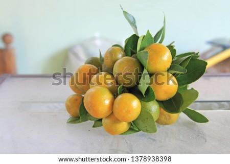Tangerines (oranges, tangerines, clementines, citrus) #1378938398