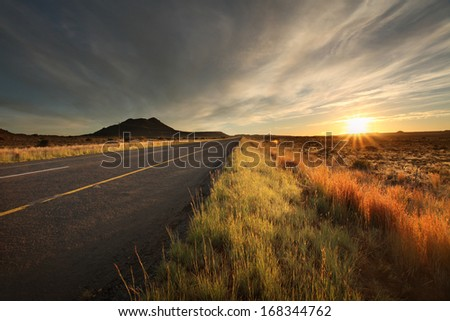 Tar road running through a golden countryside at sunrise.