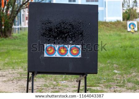Target and arrow #1164043387
