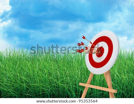 target and green field with blue sky