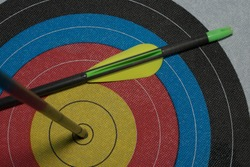 target for bow arrows with pinned arrow