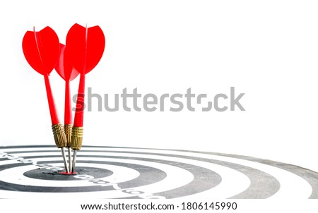 Target hit in the center by arrows. Success goals Targeting the business concept. Target and goal as concept. isolated on white background.