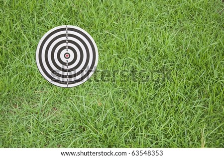 Target on green grass