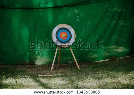 Target with arrows #1345633805