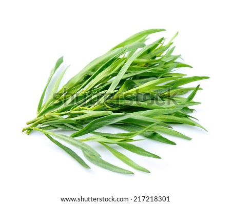 Tarragon herbs close up on white background. #217218301