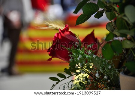 Tarragona, Spain - April 23, 2014: Roses to celebrate Sant Jordi day, the day of the book and the rose in Catalonia. Photo stock ©