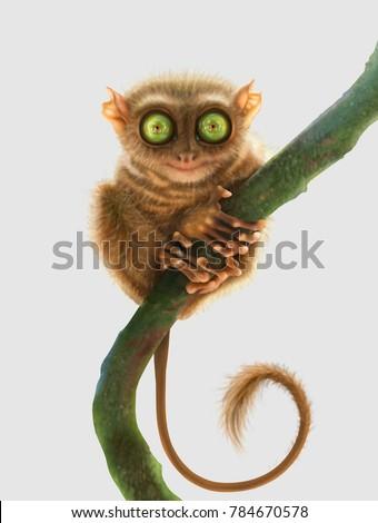 Tarsier monkey (Tarsius Syrichta, Philippines) isolated on light grey background. Digital art.