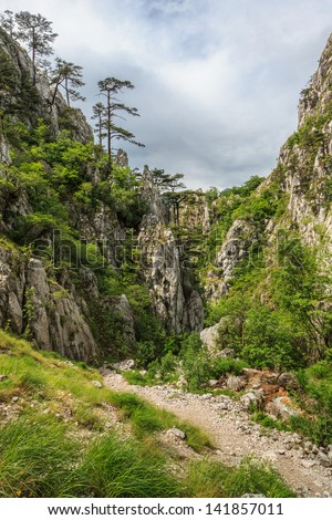 Tasnei Gorge protected area in Baile Herculane, Romania.