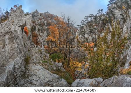 Tasnei Gorge protected area in Baile Herculane, Romania