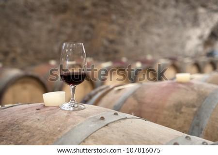 tasting wine in an old wine cellar