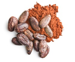 Tasty cocoa powder and beans isolated on white background.