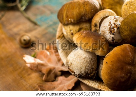 Tasty food - fresh porcini boletus oak muchrooms, high quality, ready to cook with rice, potatoes and in soup Stok fotoğraf ©