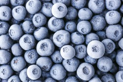 Tasty frozen blueberries, top view