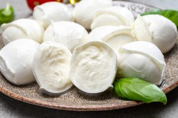 Tasty italian food, fresh white buffalo mozzarella soft cheese balls from Campania close up
