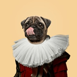 Tasty. Model like medieval royalty person in vintage clothing headed by dog head on yellow peach background. Concept of comparison of eras, artwork, renaissance, baroque style. Creative collage.