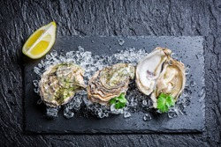 Tasty oysters on crushed ice