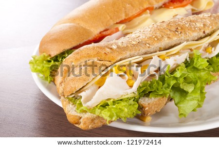 Tasty sandwiches on the plate