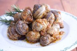 tasty snails