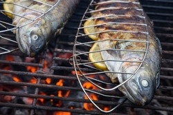 tasty trouts from a local fish hatchery on a charcoal grill