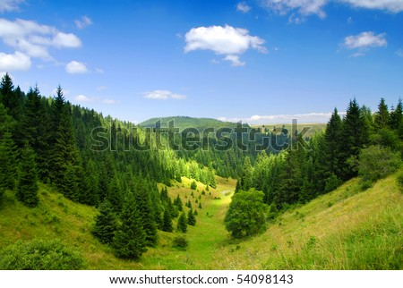 Tatras Mountains covered by green pine forests, Slovakia #54098143