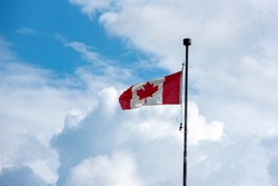 Tattered red and white Canadian flag against white clouds and blue sky on a windy day.