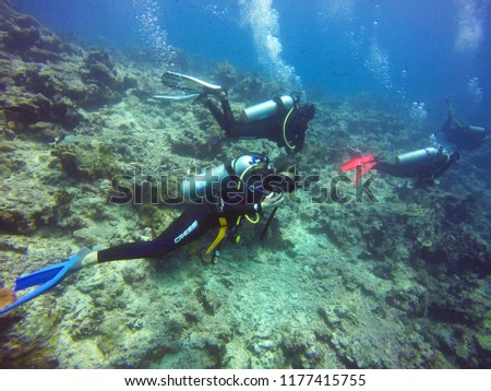Taveuni, Fiji - August 18, 2017 - Woman SCUBA Diver Looking At Camer Underwater with three other divers. #1177415755