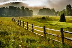 Tea Creek Meadow, rail fence, summer mist along the Highland Scenic Highway, a National Scenic Byway, Pocahontas County, West Virginia, USA