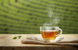 Tea cup with organic green tea leaf on the wooden table and the tea plantations background