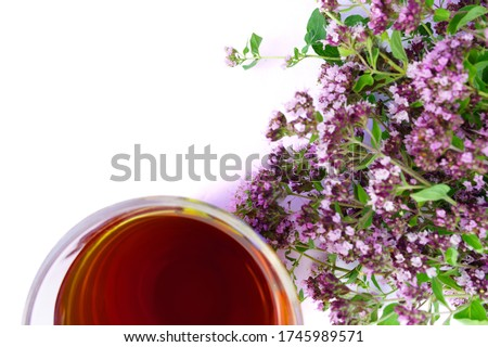 Photo of Tea in glass with defocused bouquet of marjoram isolated on white background with free space for text. Image with shallow depth of field. Web banner for your design.