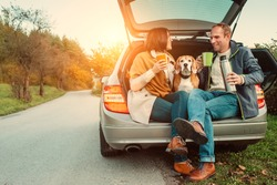 Tea party in car truck - loving couple with dog sits in car truck
