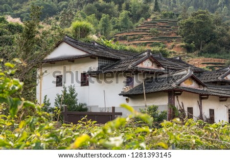 Tea plantations around Tulou at Unesco heritage site near Xiamen