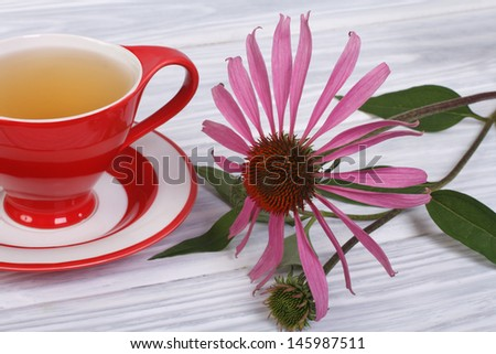 Tea with Echinacea in a red cup on the table
